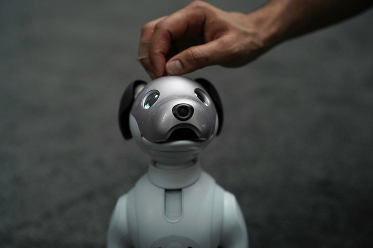 سونی، ربات خانگی Aibo را روانه بازارهای امریکا میکند