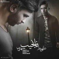 دانلود آهنگ مهراب و علی آرسام به نام نانجیب