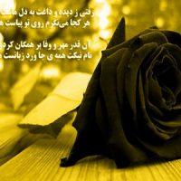پیام تسلیت فوت نزدیکان و عزیزان